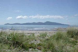 Kapiti - 91.9