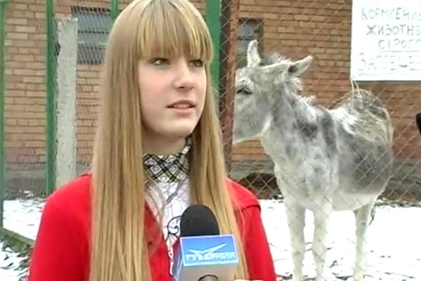 Donkey fart ruins TV interview