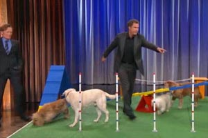 Will Ferrell's Amazing Canine Obstacle Course Demo