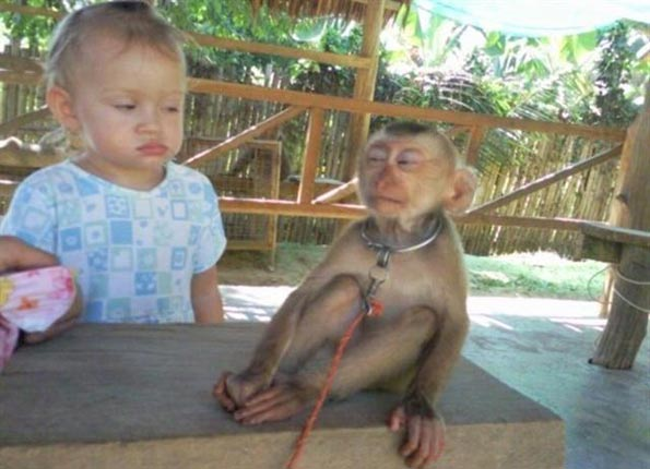 Whoever this little girl that doesn't trust monkeys is