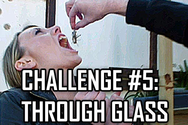 Challenge #5: Through Glass