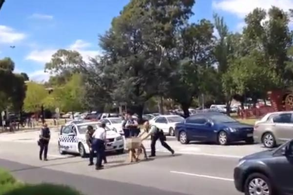 Naked man causes havoc on the streets of Australia