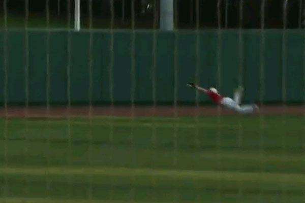 Insane baseball catch