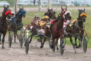 The Marlborough Harness Racing Club's Annual Two Day Winter Meeting